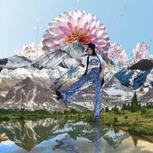 sydney collage art
